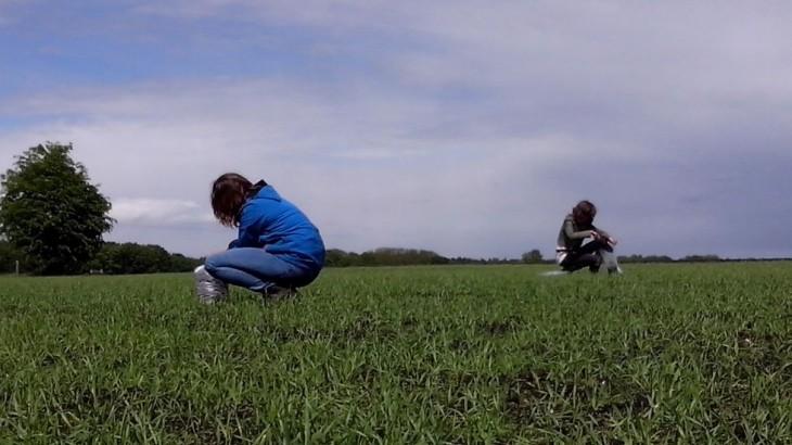 Studenten Wageningen Universiteit voeren een kiemproef uit met oude granen op Twentse grond voor Groene Kennispoort Twente