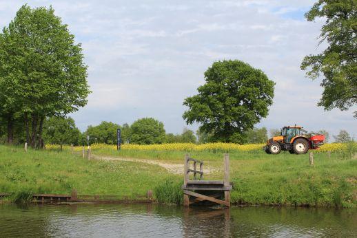 Biodiversiteit in Twente