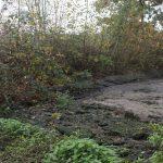 Helofytenfilter Recreatiepark De Tolplas